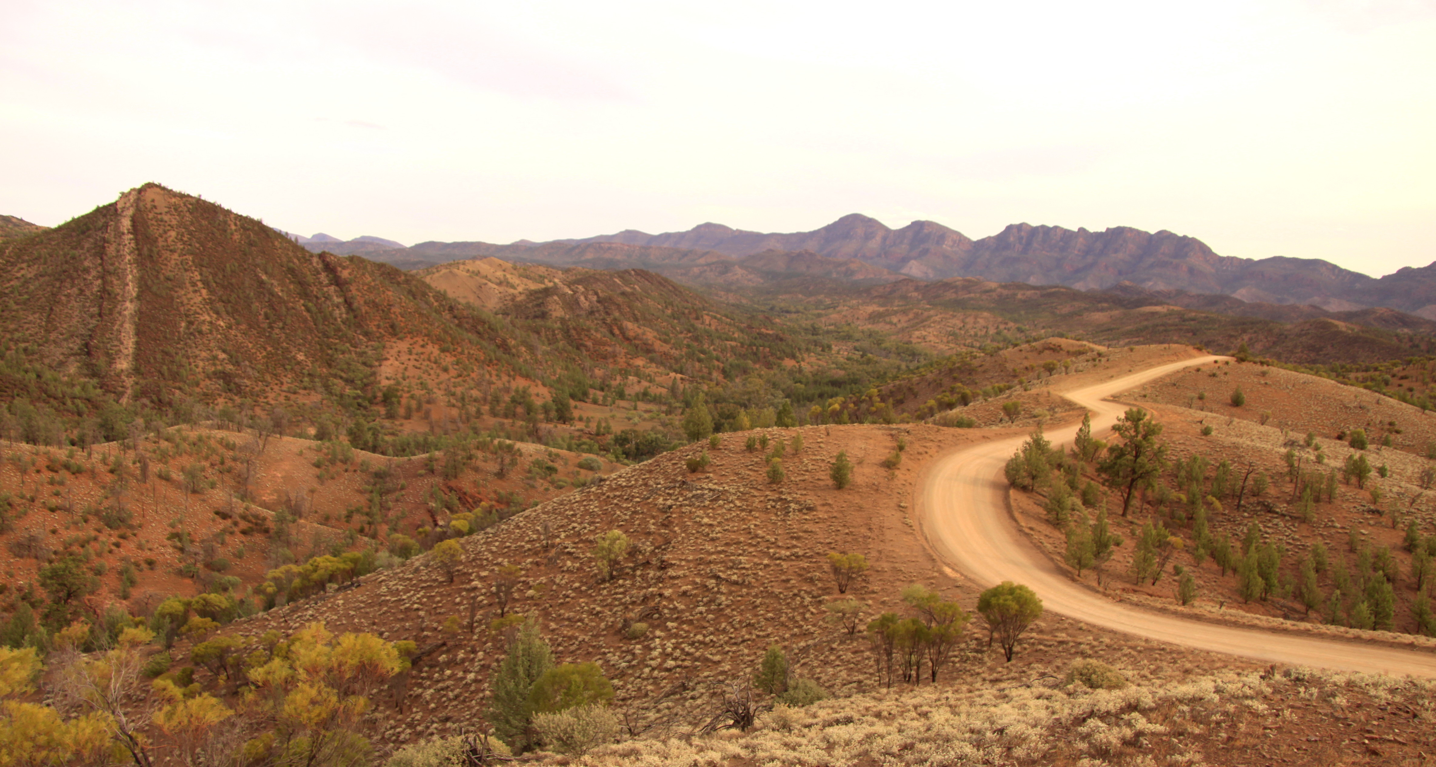 Bunraroo Road, Flinders Ranges