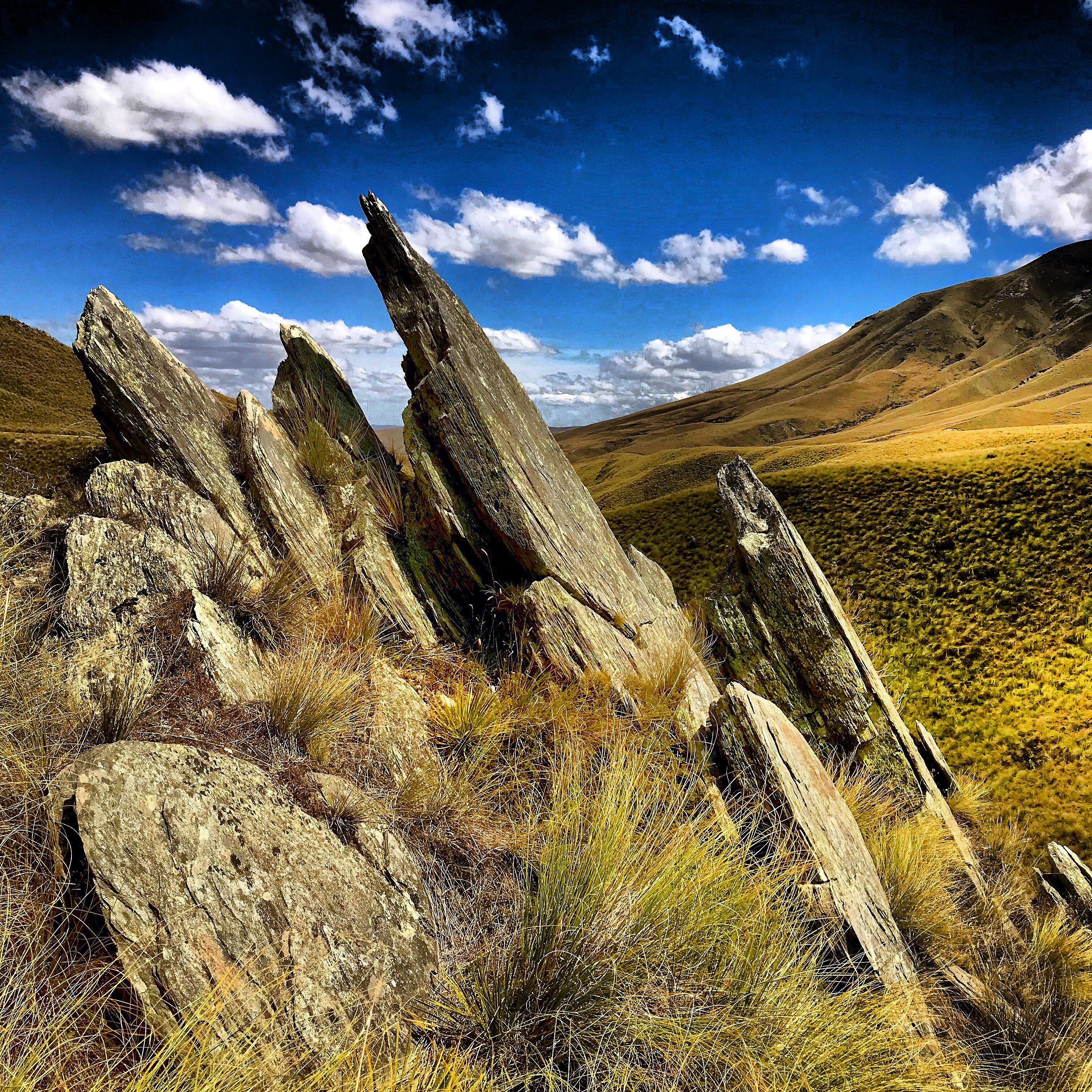 Fangs of rock protrude from the tussocky hillsides of the Danseys Pass on the South Island of New Zealand.